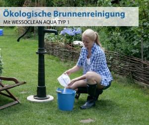reinigung-(1)